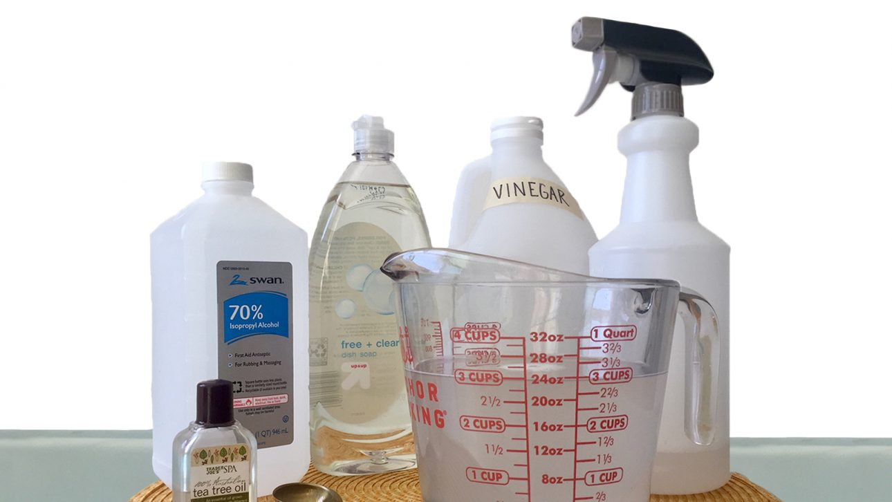 Non-Toxic Spring Cleaning Spray