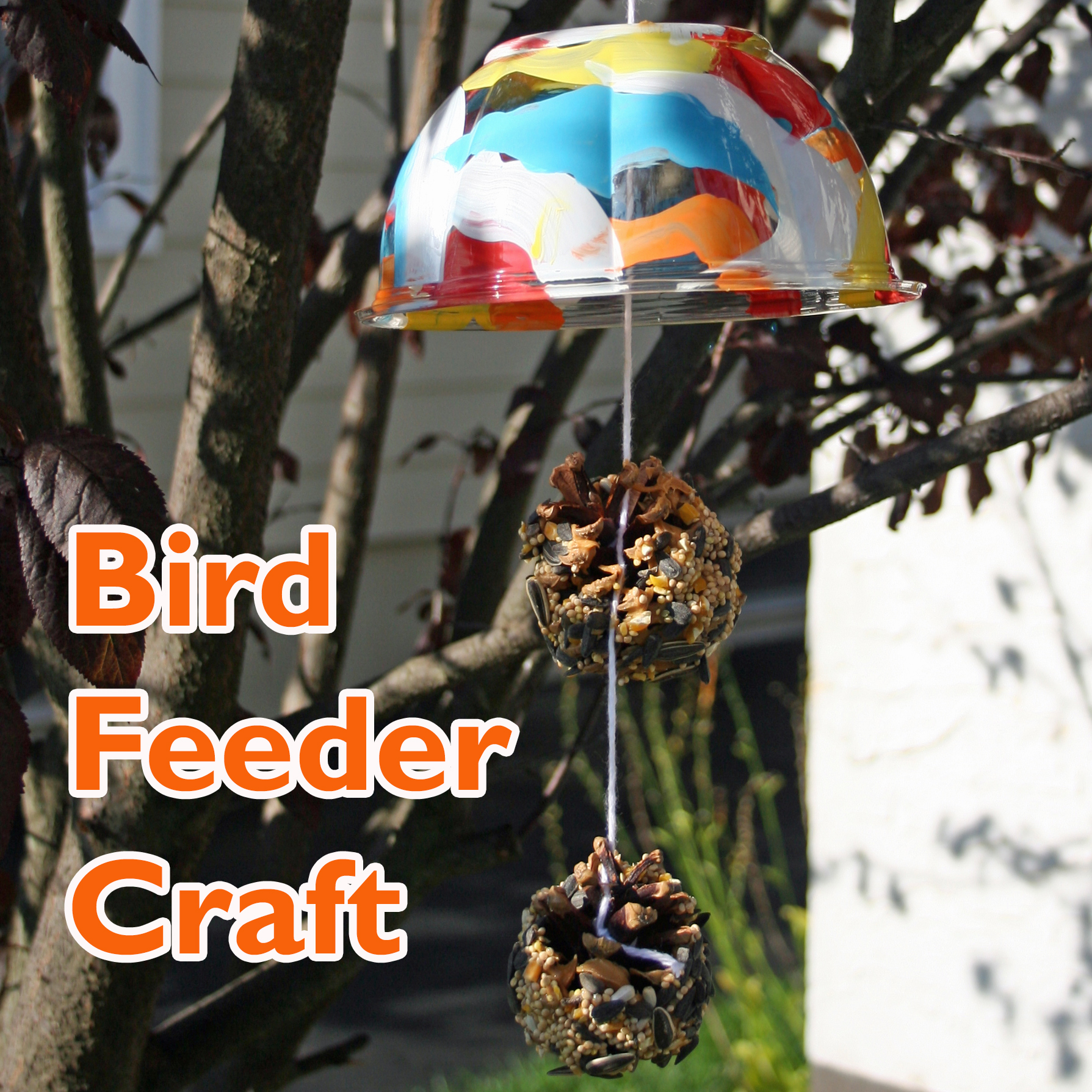 Bird Feeder Spring Craft final