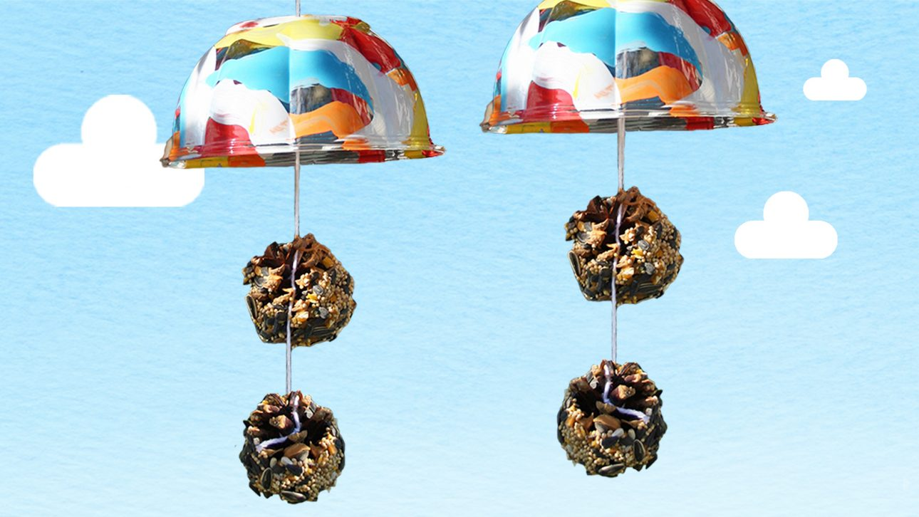 Bird Feeder Spring Craft