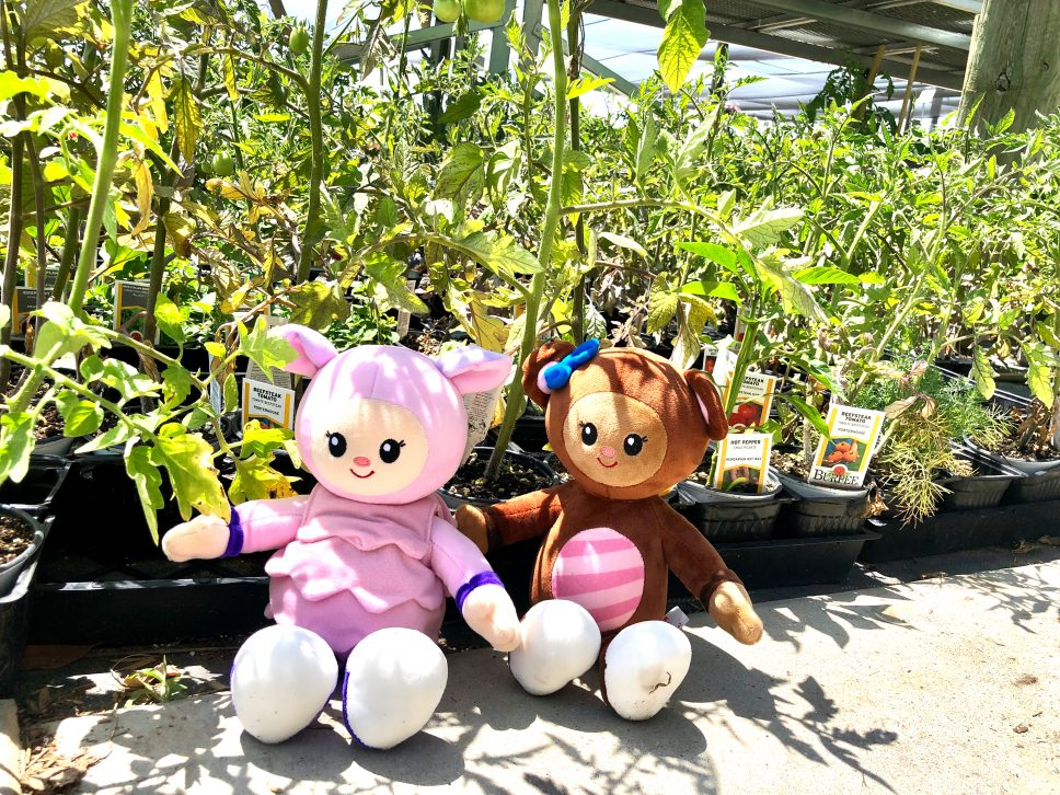 Plant Nursery Family-Activity plants and plush