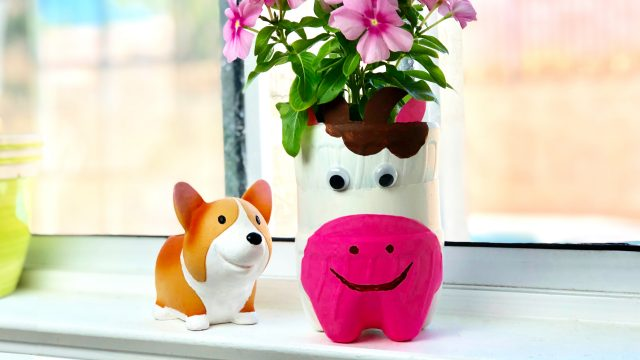 Plastic Bottle Planter Craft